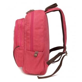 Netbook Backpack